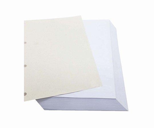 400 Folhas Refil De Caderno Universitário Argolado Liso