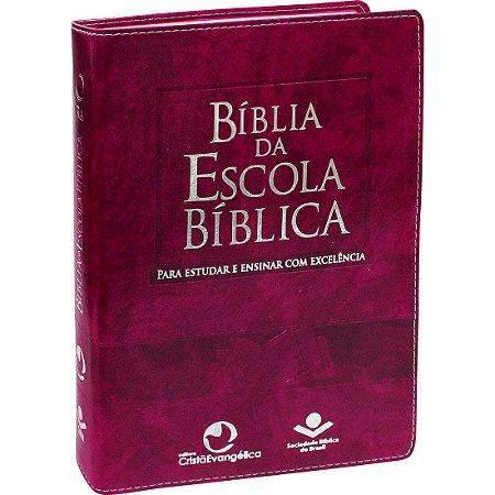 Bíblia Evangélica Estudo Da Escola Bíblica Feminina ou Masculina