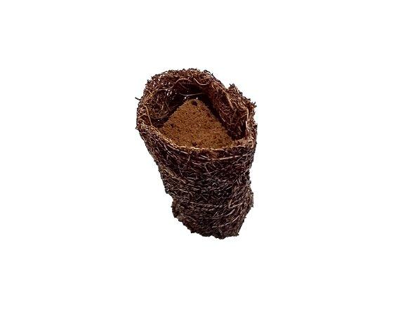 Células Germinação Cocopot coco grow 40pcs