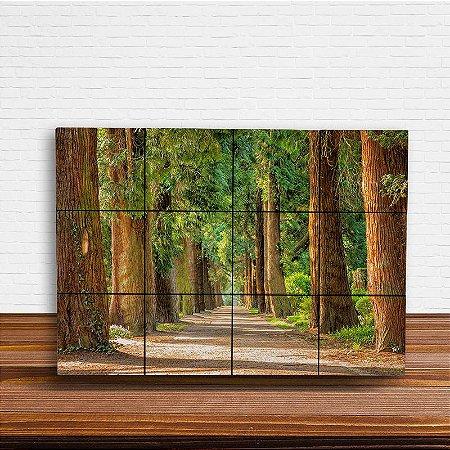 Painel Decorativo Estrada da Floresta