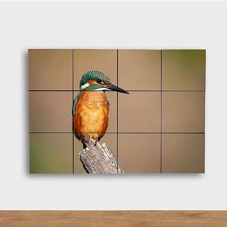 Painel Decorativo Pássaro Colorido
