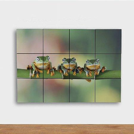 Painel Decorativo Trio Sapos