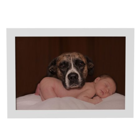 Quadro Decorativo Cachorro e Bebê