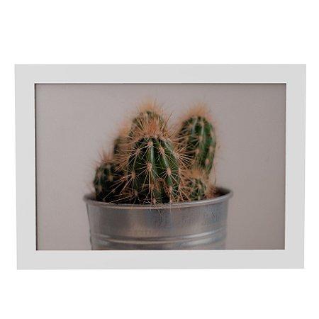 Quadro Decorativo Cactus