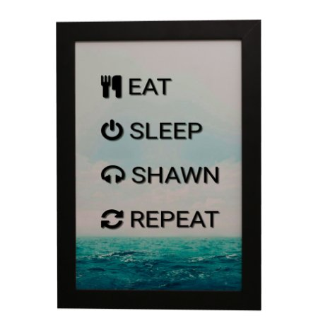Quadro Decorativo Eat Sleep Shawn Repeat