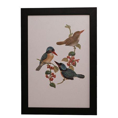 Quadro Decorativo Pássaros Vintage