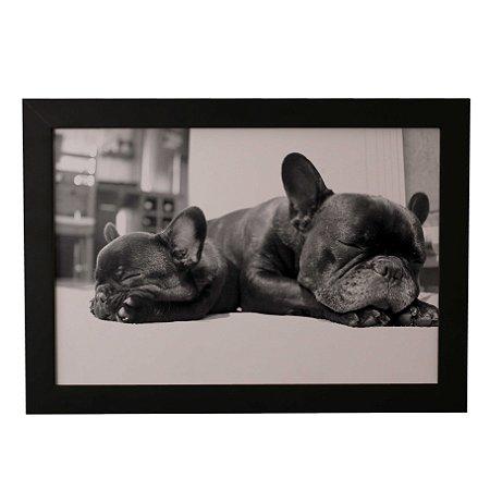 Quadro Decorativo Pugs Dormindo