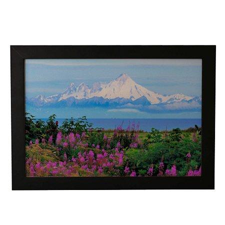 Quadro Decorativo Flores no Alaska