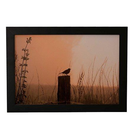 Quadro Decorativo Pássaro Preto