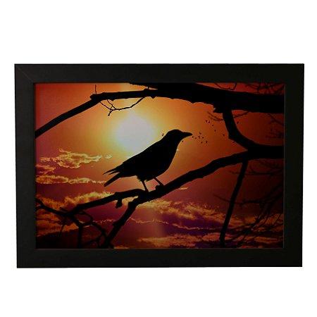 Quadro Decorativo Pássaro Noturno