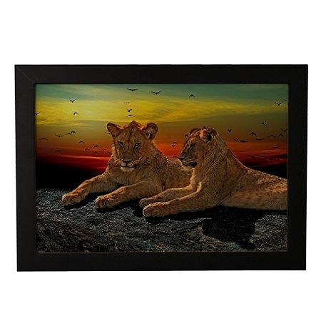 Quadro Decorativo Leões