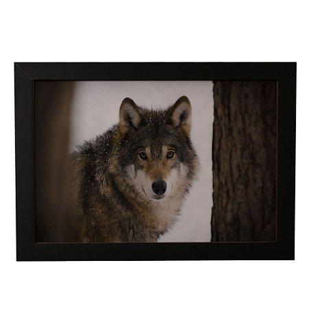 Quadro Decorativo Lobo no Ártico