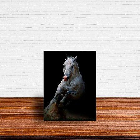 Azulejo Decorativo Cavalo branco