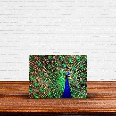 Azulejo Decorativo Pavão