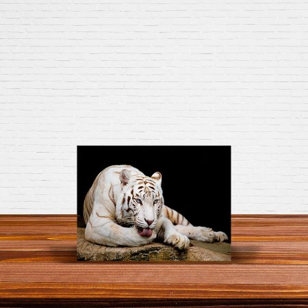 Azulejo Decorativo Tigre Branco