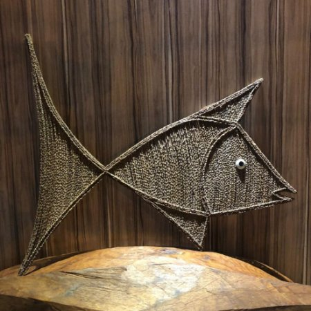 Peixe Galo do Brasil