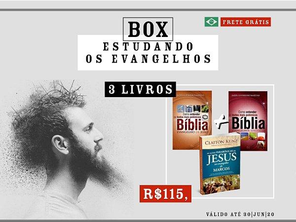 BOX ESTUDANDO OS EVANGELHOS - 3 LIVROS
