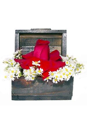 Arranjo de Flores Red and White