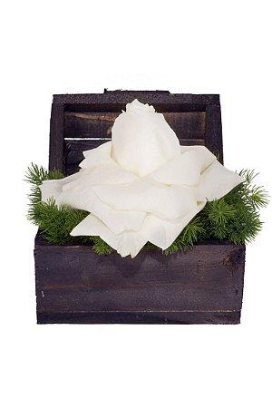 Arranjo de Flores New white