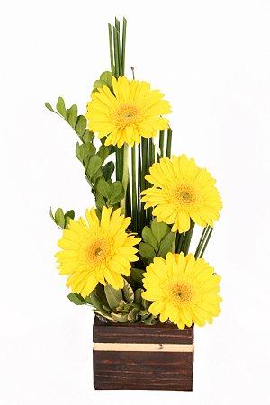 Arranjo de Flores Raios de sol