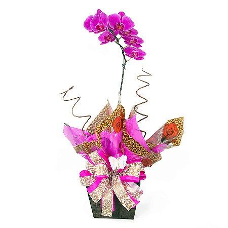 Vaso Plantado Delicada e iluminada