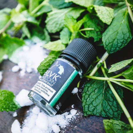 BLVK Salt Spearmint 30ml