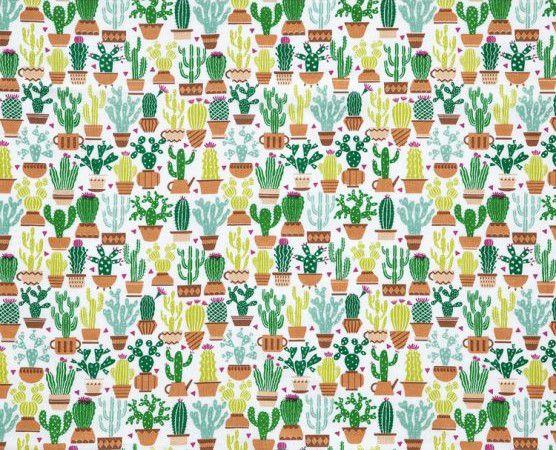 Tricoline Cactus Dohler ( 0,50 m x 1,40 m )