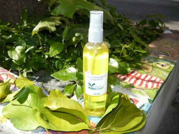 Água Desodorante Hidratante Cheiro da Amazônia aroma Bamboo 120 ML