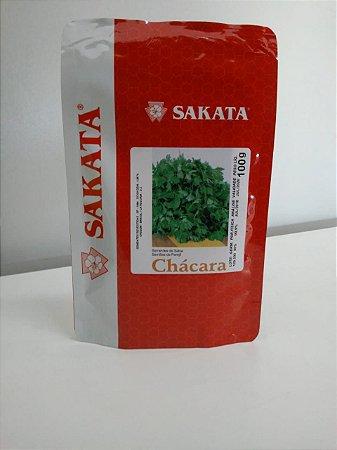 SEMENTE DE SALSA CHÁCARA 100G SAKATA