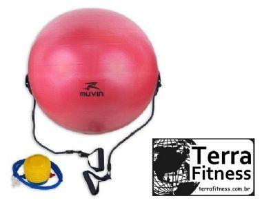 Bola Suiça com extensores 65cm anti-burst - Terra Fitness