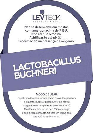 Fermento / Levedura TeckBrew Lactobacillus Buchneri