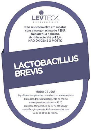 TeckBrew Lactobacillus Brevis