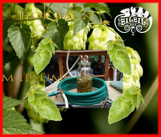 Usando um Hop Back para cerveja caseira