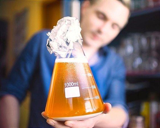 Reutilizando seu fermento na Cerveja Artesanal