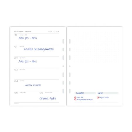 Refil Planner Fichário Grande Agenda com Data A5