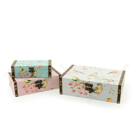 Conjunto 3 Caixas com Fecho Pássaros Colorido