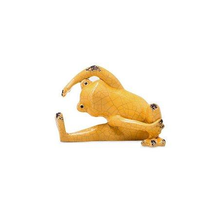 Sapinho Zen Amarelo Alongando Pescoço
