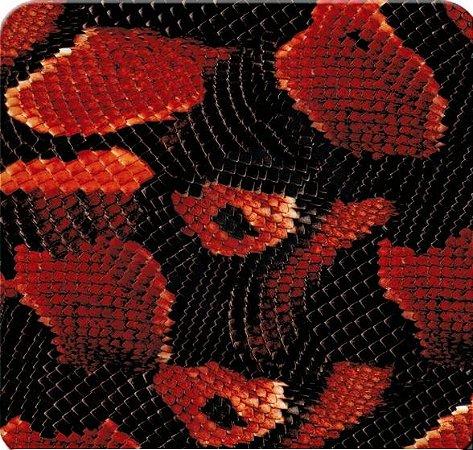 Pele de Cobra vermelha