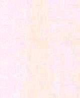 Papel de Parede Unis e Rayues 51150200