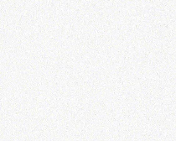 Papel de Parede Unis e Rayues 51136300