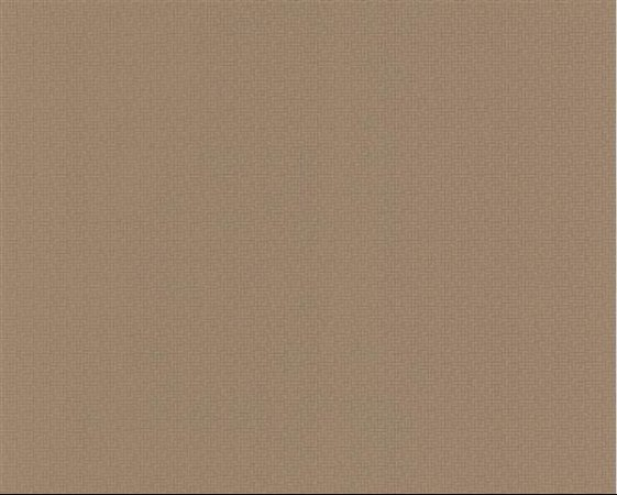 PAPEL DE PAREDE TNT ESPRIT IV LISO MARROM 109873