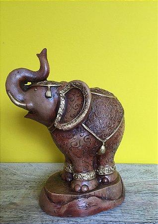 Elefante em gesso M