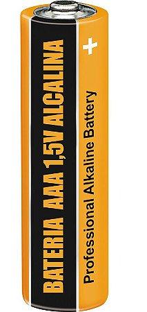 Cartela com 2 unidades Bateria AAA 1,5V Alcalina