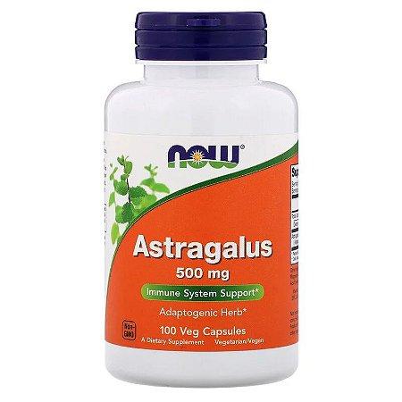 Astragalus 500mg Now Foods Original Importado Imunidade 100 Cápsulas