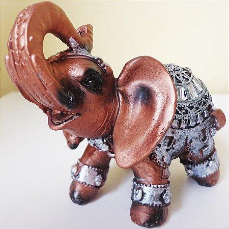 Elefantinho Acobreado