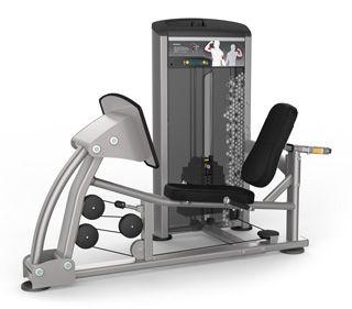 Leg Press - 300 LBS