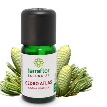 Óleo Essencial de Cedro - 10ml