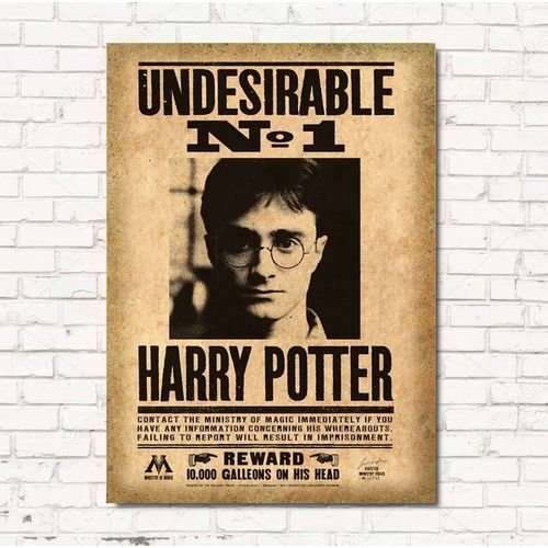 Placa Decorativa Harry Jornal - Beek