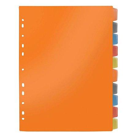 Divisórias 10 Matérias Colorido C/Aba - Dac