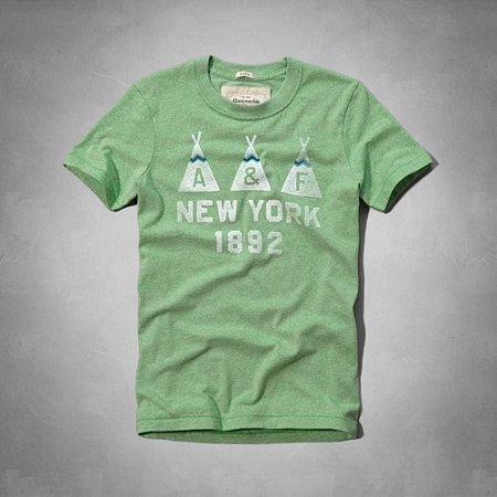 Camiseta Abercrombie & Fitch Masculina Flagstaff Mountain Tee - Green